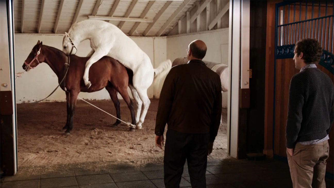 Sex pics horse Amateur Sex