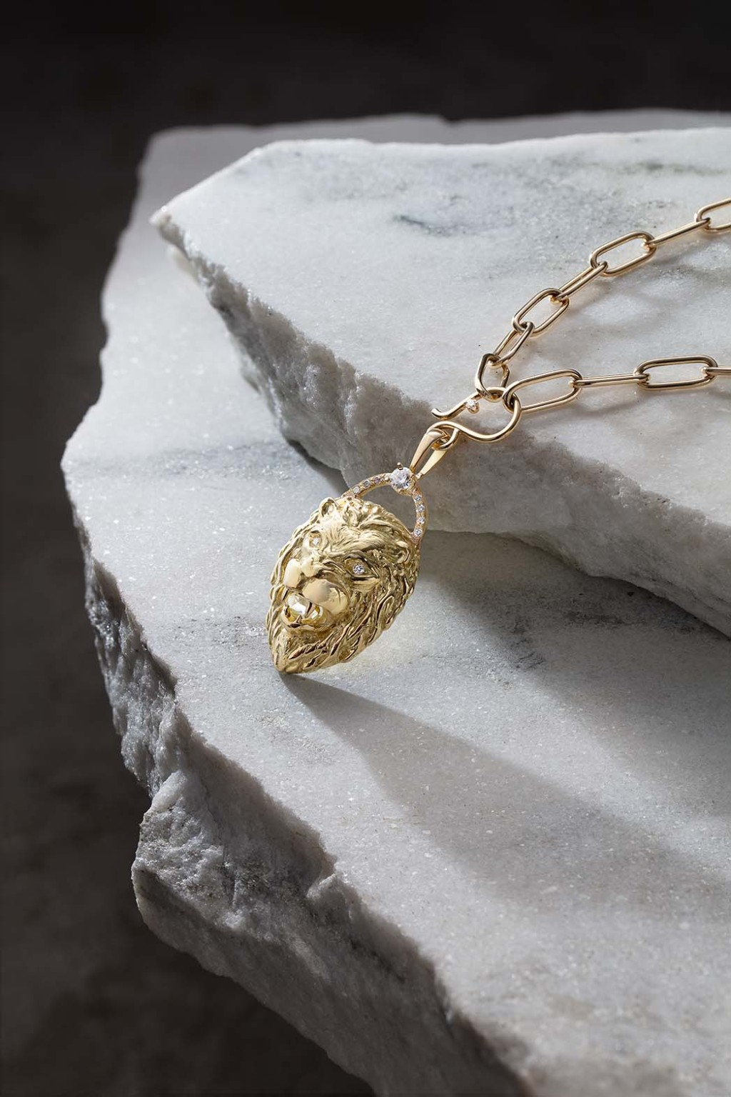 Lion's head pendant necklace by jewelry designer Zoë Chicco for the ReSet Collective.