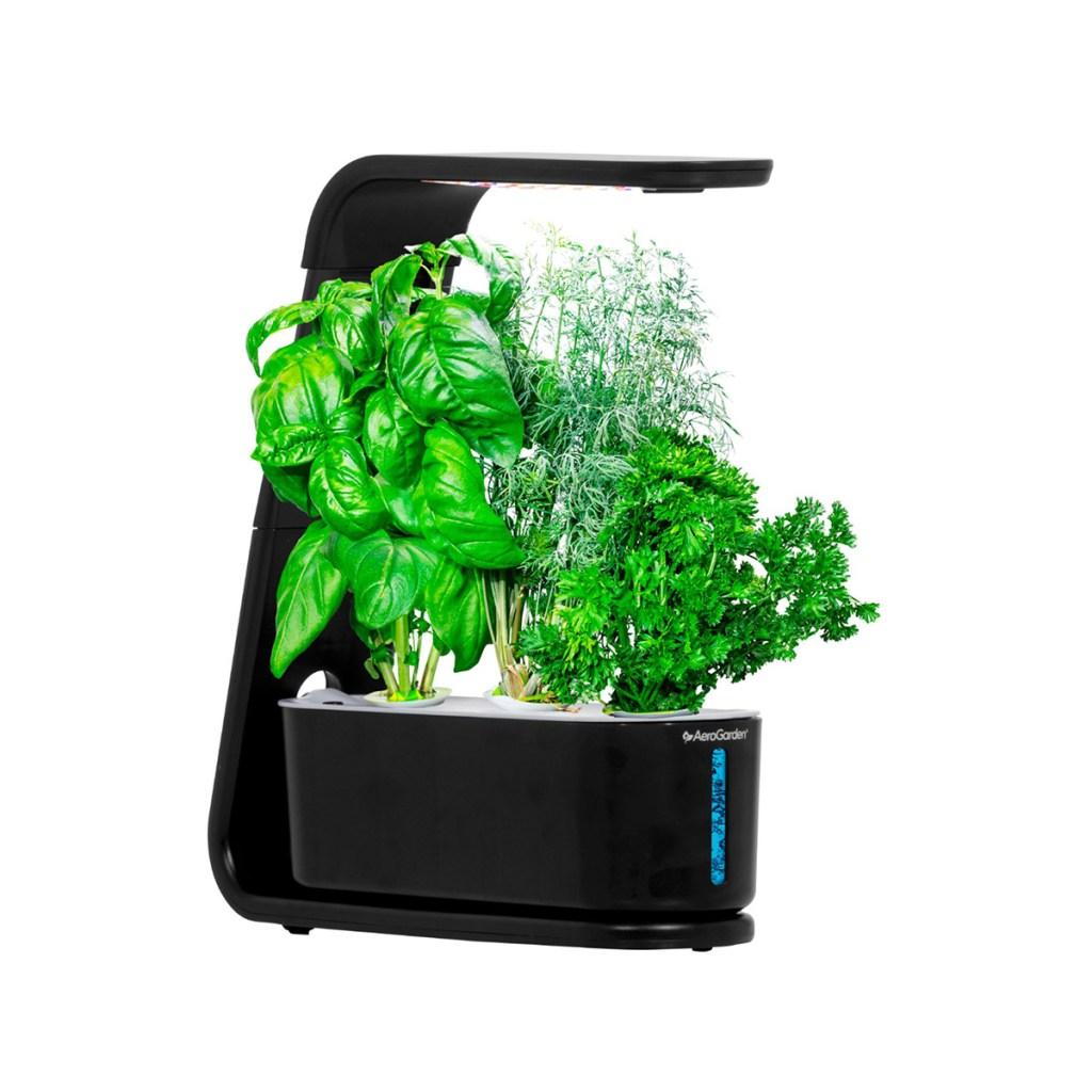 AeroGarden Sprout Healthy Cooking Garden Kit