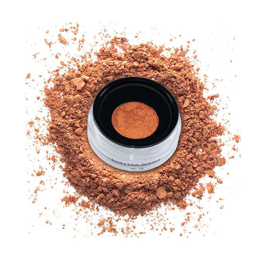 Danessa Myricks Beauty Evolution Setting Powder
