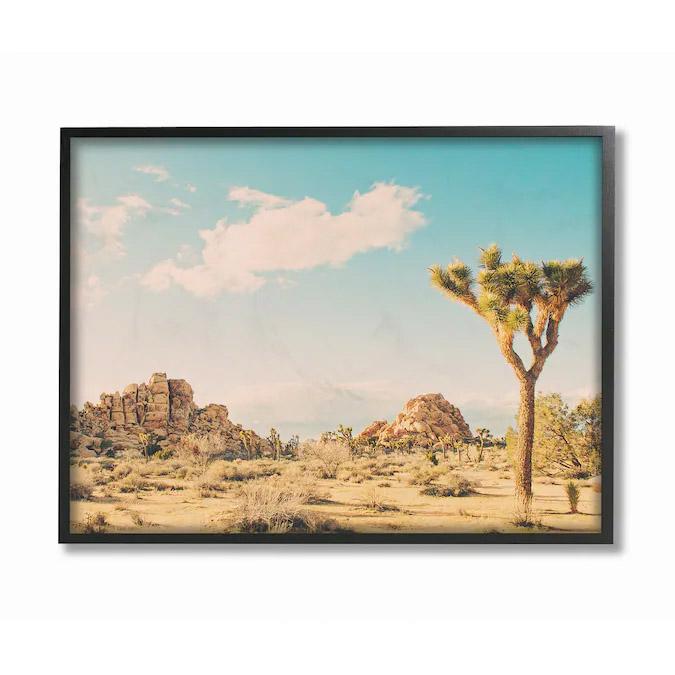 Stupell Industries Desert Landscape Framed Wood Print